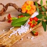 zur Übersicht - Homöopathie