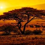 weiter zu - Reiseländer und Reiseziele in Afrika