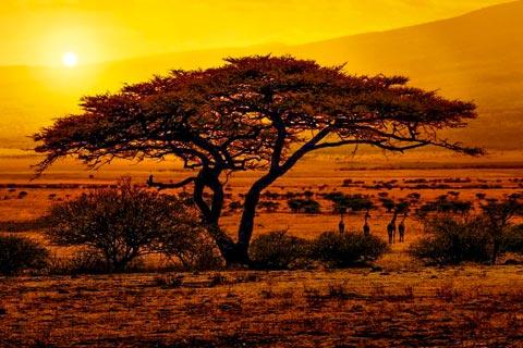 Reiseländer in Afrika und Reiseziele in Afrika