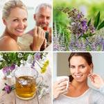 zur Übersicht - Pflanzliche Hormone