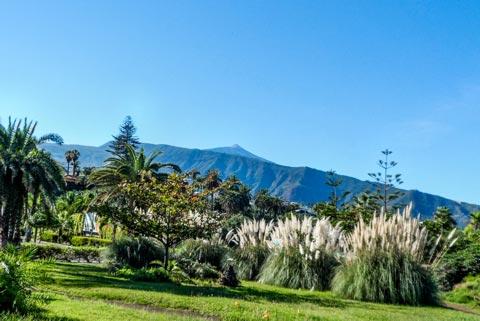Urlaub auf Teneriffa - Ein Blick auf den Teide