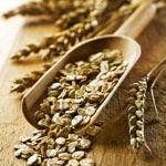 weiter zu - Was ist Vitamin B1 bzw. Thiamin?