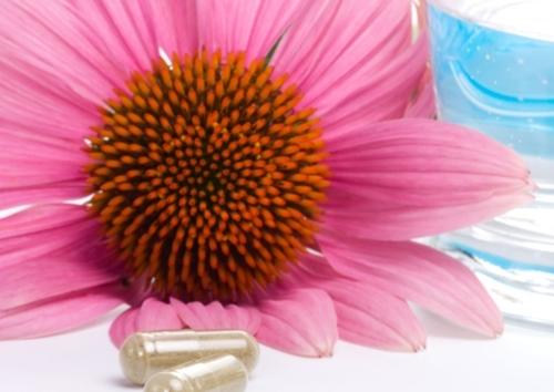 Allergie – Therapie und Behandlung mit alternativen Methoden