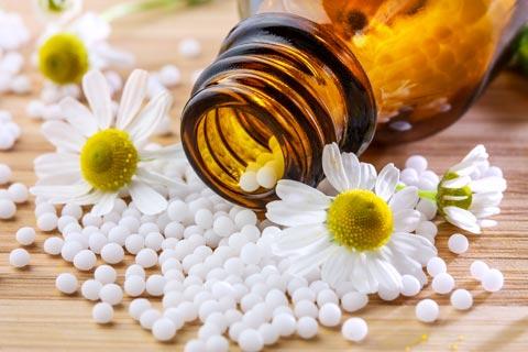 Chamomilla Globuli – Wirkung und Anwendung in der Homöopathie