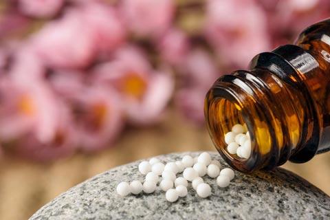 Cocculus Globuli – Wirkung und Anwendung in der Homöopathie
