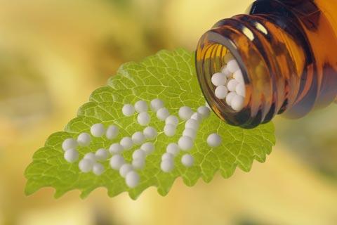 Lycopodium Globuli – Wirkung und Anwendung in der Homöopathie