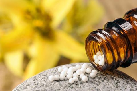 Nux Vomica Globuli – Wirkung und Anwendung in der Homöopathie