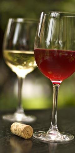 Welcher Wein passt zu Spargel?