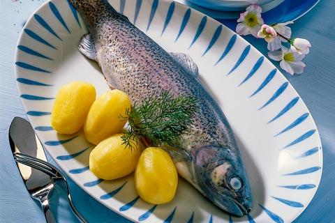 Mittagessen - Forelle blau