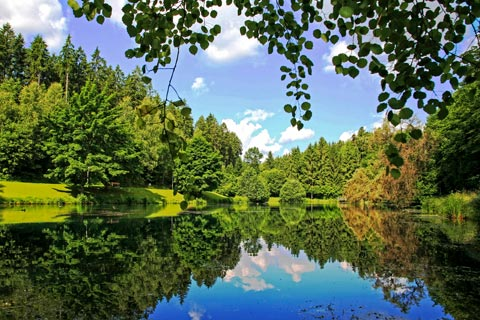 Ausflugsziele für Urlaub im Schwarzwald