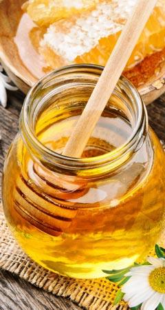 Manuka-Honig und seine Heilwirkung