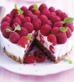 LOGI Rezepte: Leichte Himbeer-Joghurt-Torte