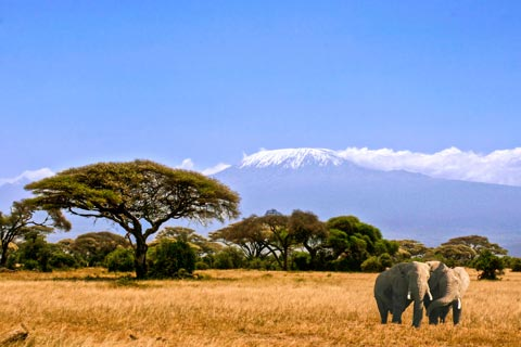 Reiseziele für Urlaub in Kenia