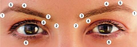 Akupressur im Gesicht gegen Falten - Akupressurpunkte um die Augen (Bild2)