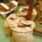 weiter zu - Kakao - ein Mittel gegen trockene Haut