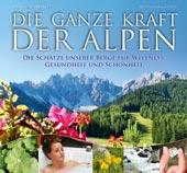 Die ganze Kraft der Alpen von Adelheid Wanninger, Leopold Stocker Verlag