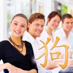 Chinesische Sternzeichen: Chinesisches Tierkreiszeichen Hund, Finanzen und Beruf