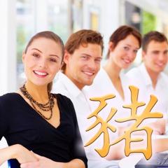 Chinesische Sternzeichen: Chinesisches Tierkreiszeichen Schwein, Finanzen und Beruf