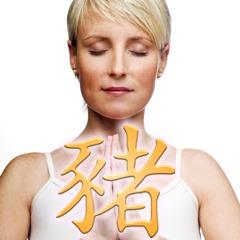Chinesische Sternzeichen: Chinesisches Tierkreiszeichen Schwein und die Gesundheit