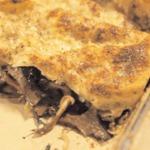 weiter zu italienische Rezepte - Wildpilz-Lasagne