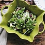 weiter zu gesünder Essen - Keimpflanzen