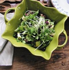 Gesünder essen: Keimpflanzen und ihre gesundheitsfördernden Wirkungen