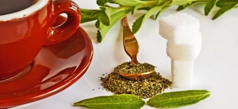 Stevia - Anwendung und Dosierung
