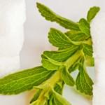 weiter zu - Stevia und Diabetes