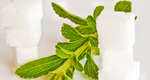 Stevia bei Diabetes