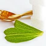 weiter zu - Stevia Nebenwirkungen