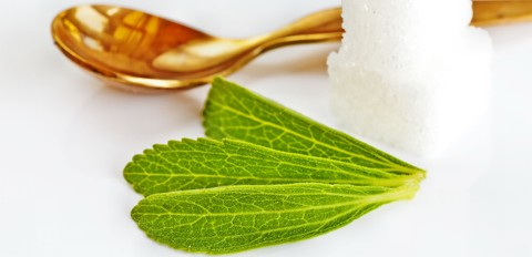 Hat Stevia Nebenwirkungen?