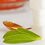 weiter zu - Stevia als Zuckerersatz