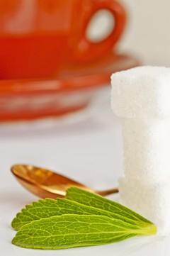 Stevia als Zuckerersatz und Süßstoff