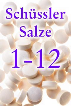Liste der Schüssler Salze - Verzeichnis und Übersicht über die 12 Schüssler Salze