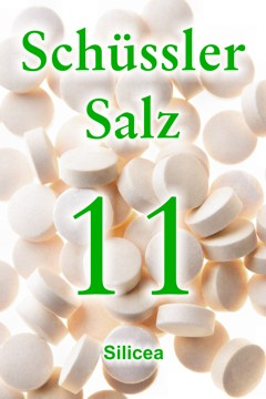 Schüssler Salz 11 Schüssler Salz Nr 11