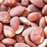 weiter zu Naturheilmittel - Bittere Aprikosenkerne