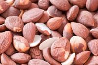 Bittere Aprikosenkerne fördern Ihre Gesundheit