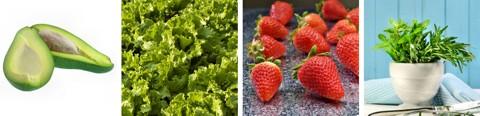 Basische Lebensmittel - Tabelle / zusätzlich im Frühling