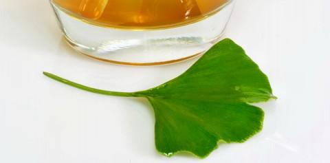 Ginkgo – die Anwendung und Dosierung