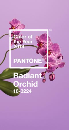 die pantone farbe des jahres 2014 radiant orchid. Black Bedroom Furniture Sets. Home Design Ideas