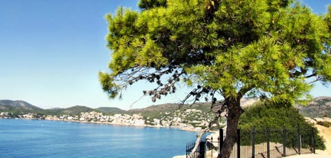 Relaxen im Wellness Urlaub auf Mallorca