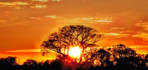 Reiseziele im August - Südafrika
