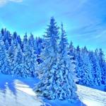 weiter zu - Reiseziele im Dezember