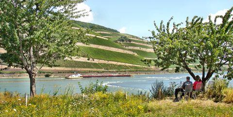 Reiseziele im Oktober - die Pfalz