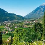 weiter zu - Den Sommer in Südtirol genießen