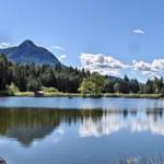 weiter zu Urlaub in Südtirol -  Den Sommer in Südtirol genießen