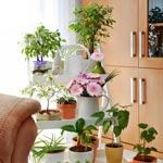 weiter zu - Deko-Ideen für Wohnzimmer