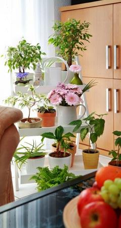 Wohnzimmer dekorieren | Deko-Ideen für Wohnzimmer | Deko