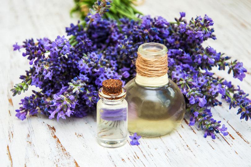 selbstgemachte haarkuren rezept zypressen lavendel l. Black Bedroom Furniture Sets. Home Design Ideas