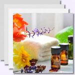 50 ätherische Öle - ihre Wirkung und Anwendungsmöglichkeiten